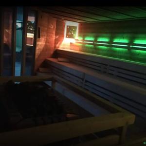 Metropol-Sauna